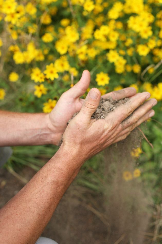 Choosing Espoma Organic Soil Supplements