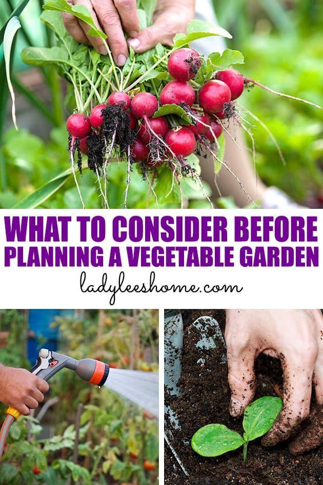 Let's go over 5 things that you should consider before diving into planning your vegetable garden. These are important garden tips that can save you a whole lot of work and frustration!