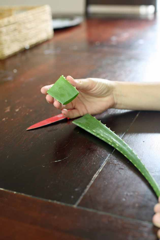 Aloe vera can be used internally in a form of aloe vera juice. It is very simple to make and the health benefits are endless. Here is how to make aloe vera juice. #LadyLee'sHome