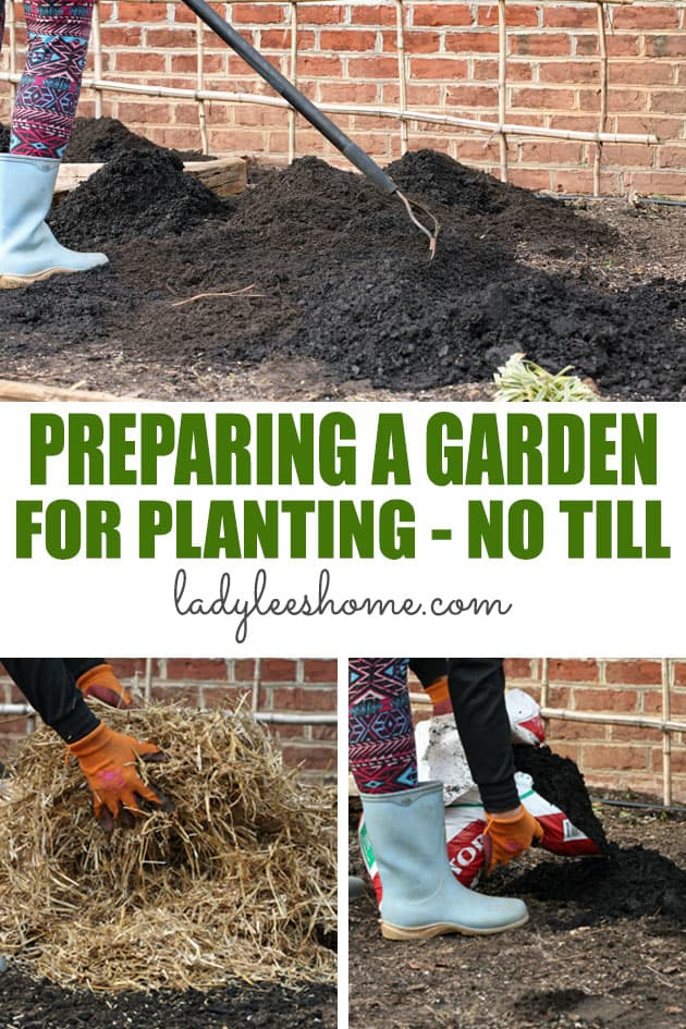 Preparing a garden bed for planting without tilling is so easy! It's healthier for the soil and it's much less work for the gardener. And, the plants love it. Here is how to do it in five easy steps!