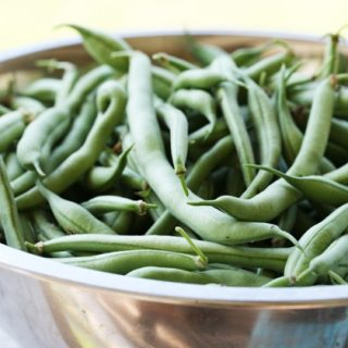 Freezing Green Beans From the Garden