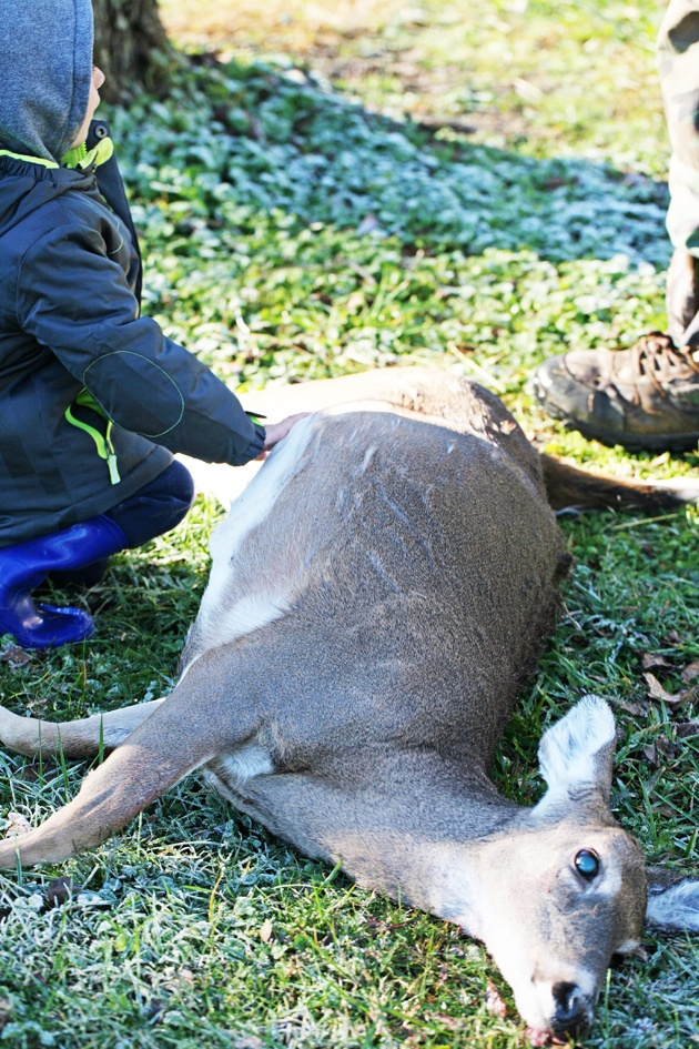 butcher-deer-03