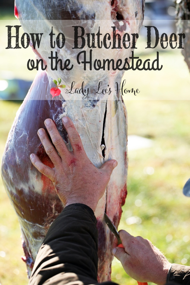 How to skin and butcher deer on the homestead. A step by step picture tutorial of how we skin and butcher deer on the homestead. #LadyLee'sHome