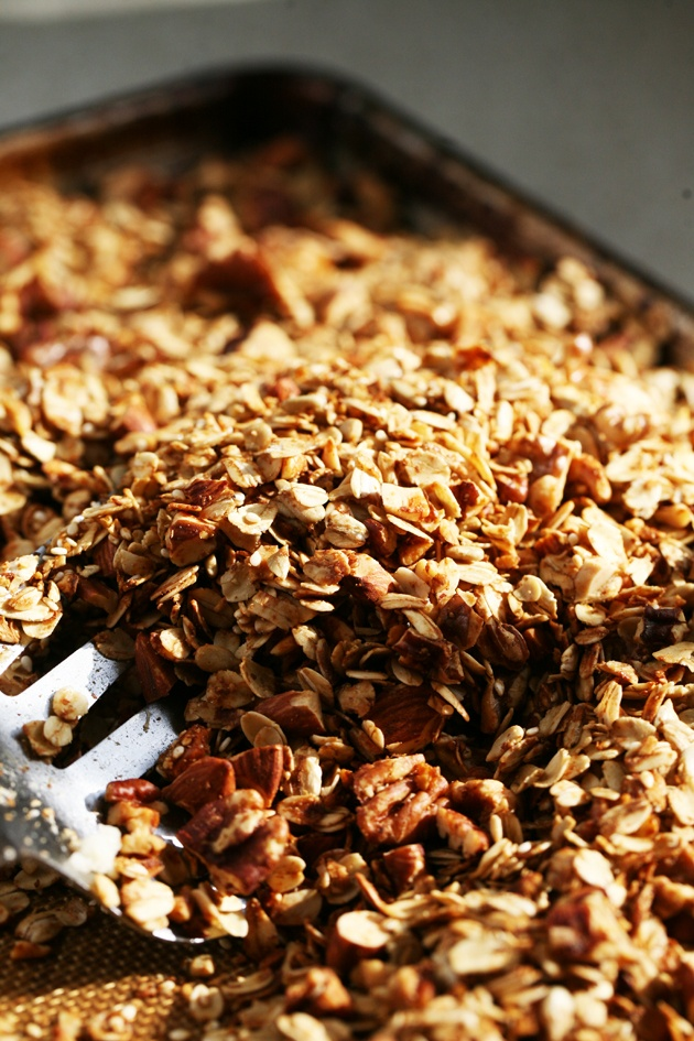 My kids' poop turned neon green. No joke! I had to find a replacement to the full-of-colors morning cereal. So I made this super healthy granola recipe! #LadyLee'sHome
