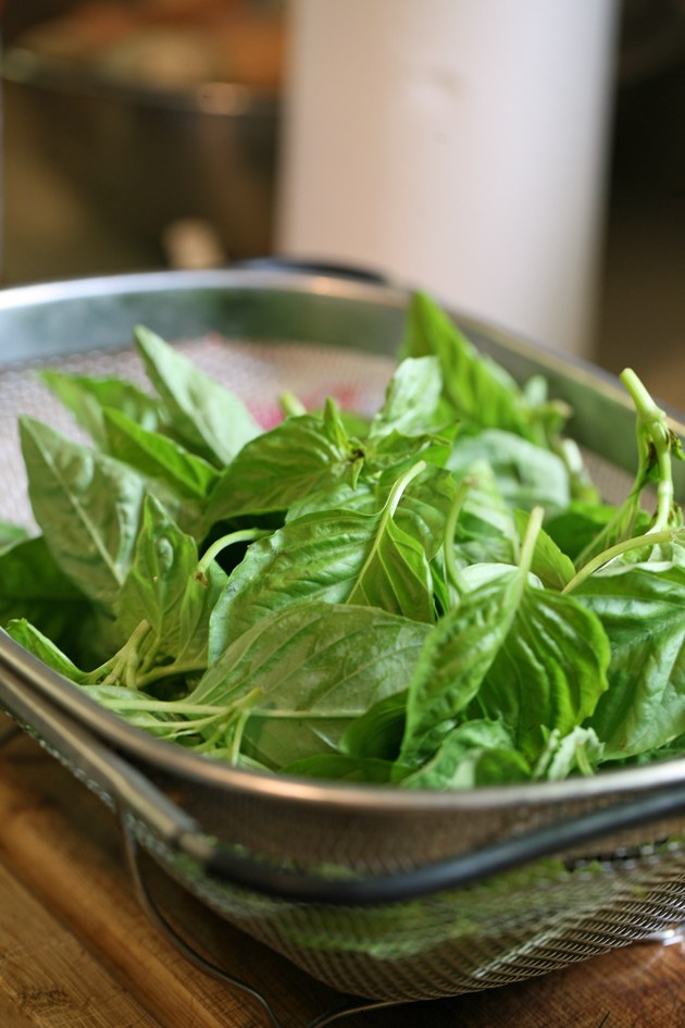 Clean basil leaves