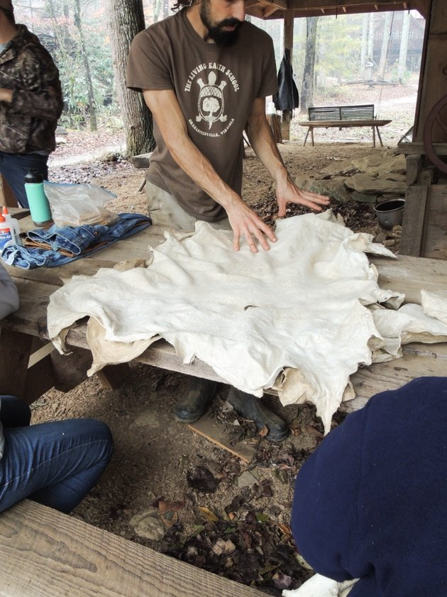 Join me for a step by step picture tutorial on how to tan a deer hide. We will learn the process of brain tanning hides into workable buckskin. #howtotanadeerhide #tanninghides #tanningdeerhide #howtotanahide