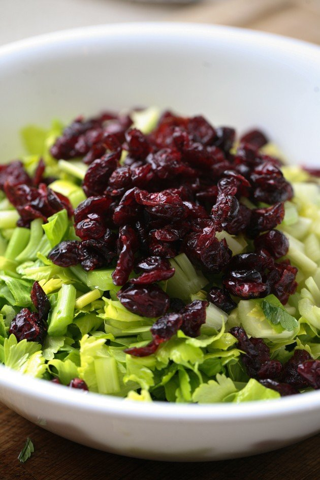 A simple, healthy, and tasty celery salad with pecans and cranberries.