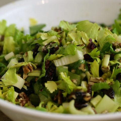 Celery Salad With Cranberries and Pecans