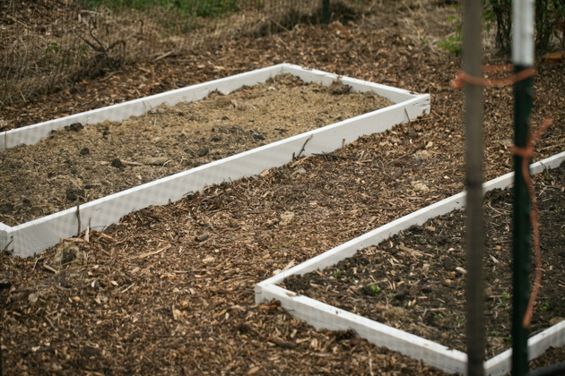 Building raised garden beds. This is a simple way to build garden beds, it cost me $0 and the whole project took just a few hours. #LadyLeesHome, #gardening #garden #raisedgardenbeds #organicgardening