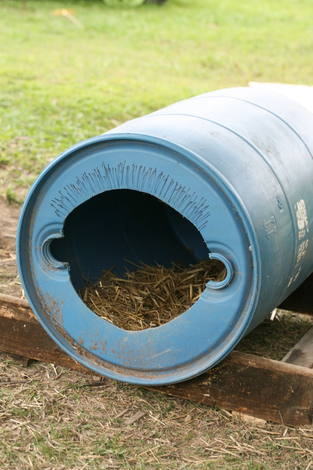 Here is how to build a dog house from a cheap barrel. This cost us $0, is super easy, takes a very short time and the dogs LOVE it!