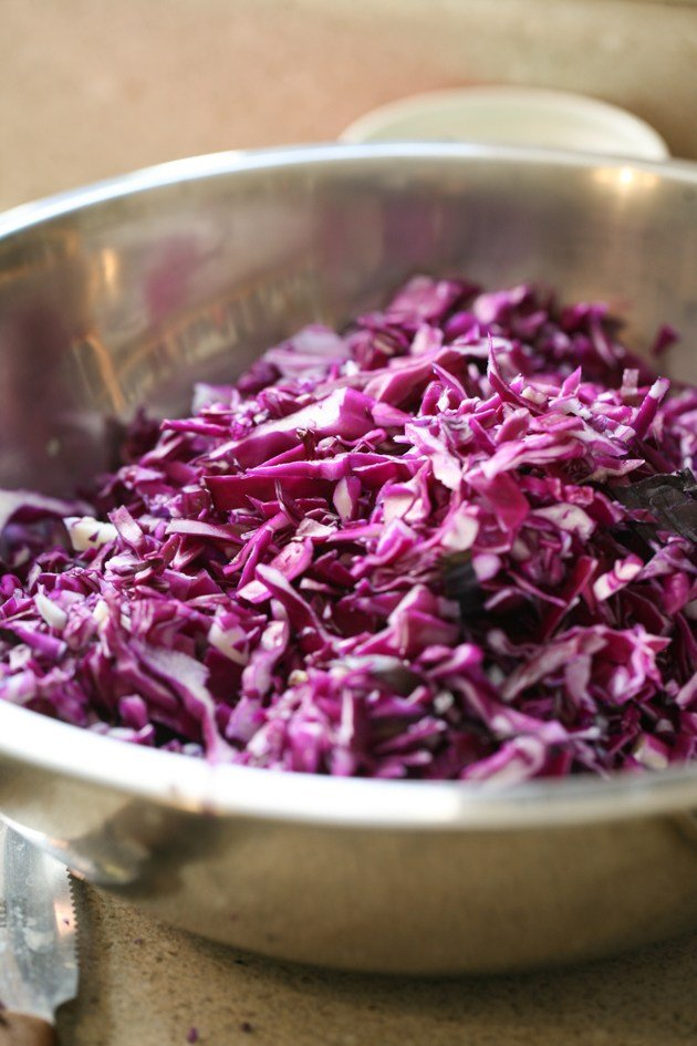 A very simple red cabbage salad that is a perfect side dish for any meal! #LadyLeesHome #cabbagerecipes #salads #redcabbage