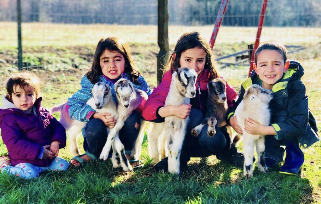 Lee's kids with baby goats.