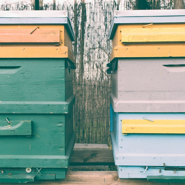 One of the first things you'll have to do as a beginner beekeeper is to choose your hive style. In this how to beekeeping for beginners post we explorer top-bar and Langstroth hives.