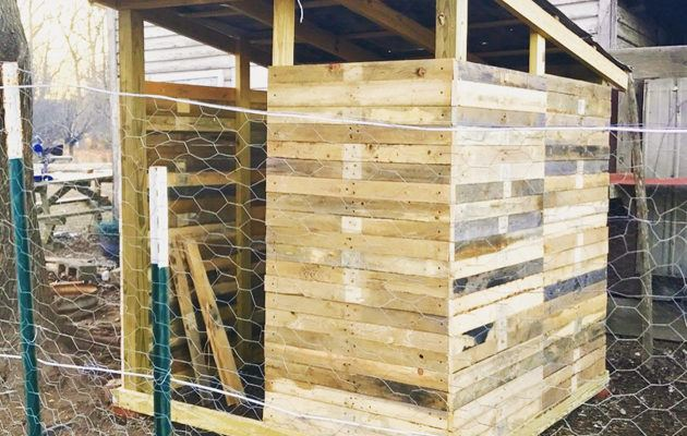 How to Build a Chicken Coop From Pallet Wood