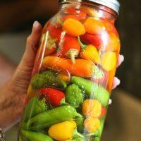 Preserving Peppers in Vinegar and Salt