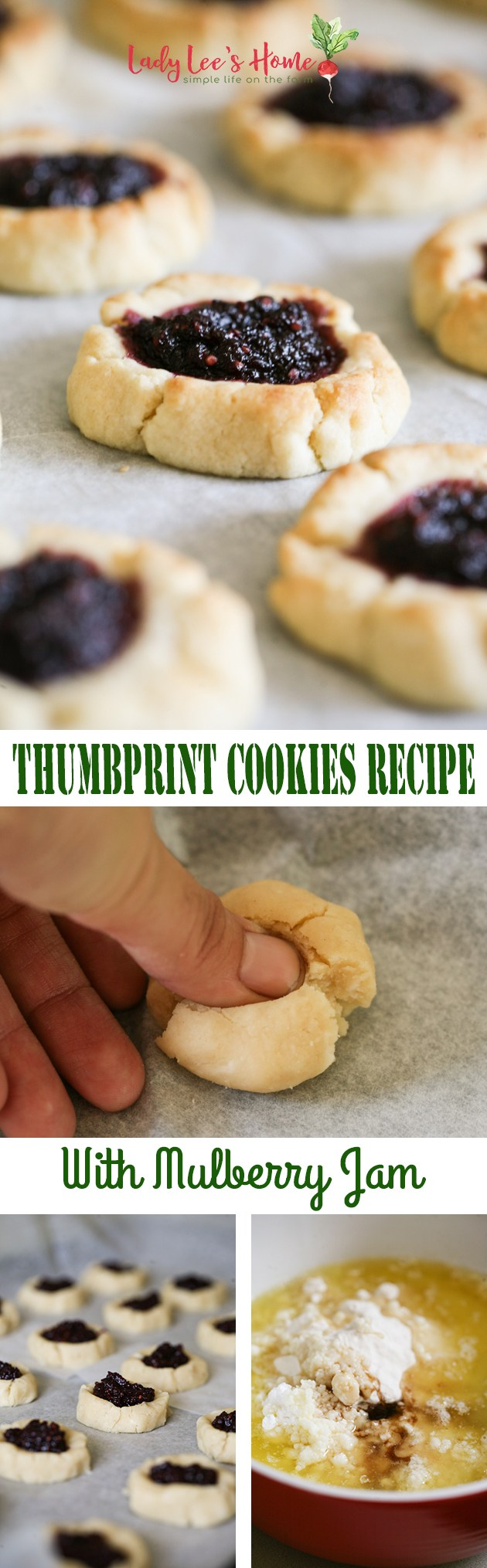 Deliciously sweet thumbprint cookies recipe with homemade mulberry jam! Use this dough to make simple sugar cookies or fill it with the jam of your choice.