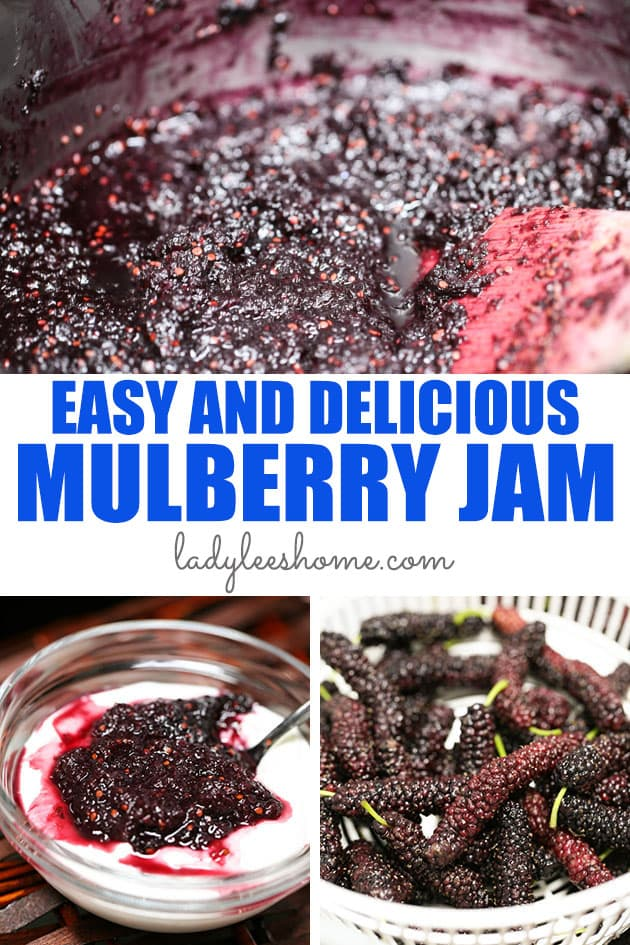Learn how to make mulberry jam. This mulberry jam is simple to make, not too sweet and preserves the very special taste of mulberries. It's a favorite spring and summer jam!