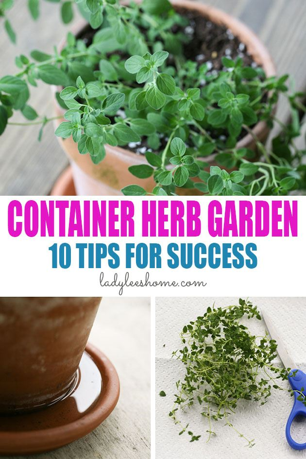 Let's grow a container herb garden! Here are 10 tips that will help you grow a productive and beautiful container herb garden! #containerherbgarden #growingherbsincontainers #herbcontainergarden #gardeningherbsincontainers