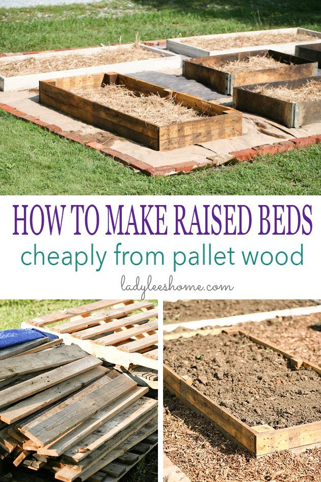 I want to show you how to make raised beds cheaply from pallet wood. You can source this wood free and the construction is super easy and fast! #woodpalletprojects #woodpalletprojectsideas #woodenraisedgardenbeds #raisedvegtablegarden #dyiraisedgardenbeds