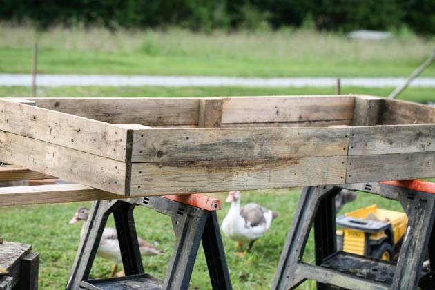 I want to show you how to make raised beds cheaply from pallet wood. You can source this wood free and the construction is super easy and fast!
