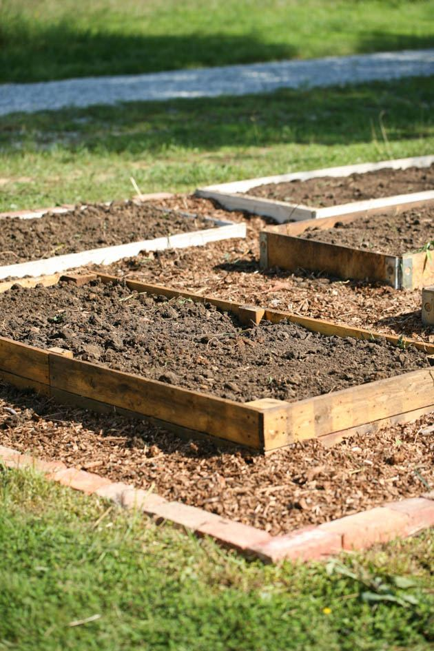 Would you like to know how to start a garden where grass is currently growing? Create a productive vegetable garden on your lawn in 5 simple steps!