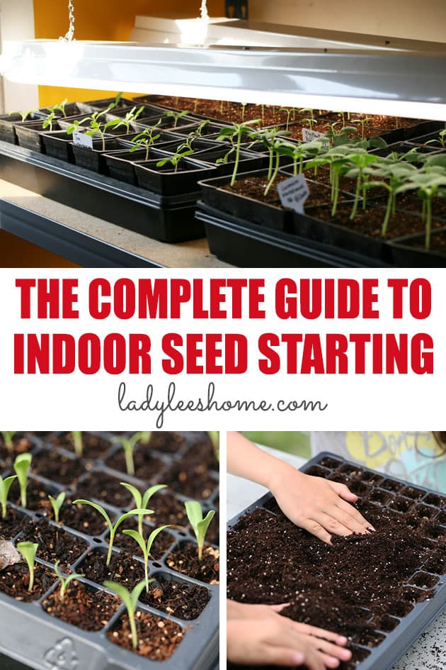 This is the complete guide to indoor seed starting. From beginning to end, everything that you need to know about how to start seeds indoors.
