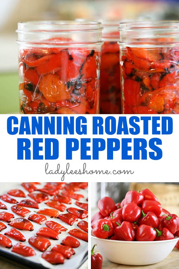 Canning roasted red peppers at home is fairly easy! It's a great way to preserve your garden peppers and the result is delicious. Canned roasted red peppers can be used in many ways and add amazing flavor to many dishes.