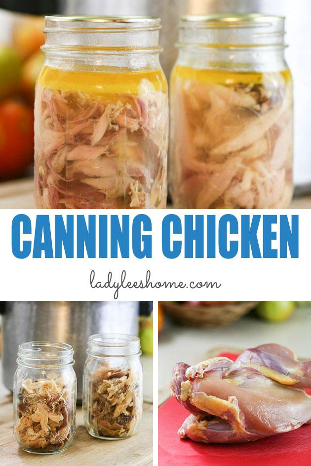 Canning chicken at home safely is a simple process. Let me show you step by step how to can chicken at home in this picture tutorial. #canningchicken #howtocanchicken