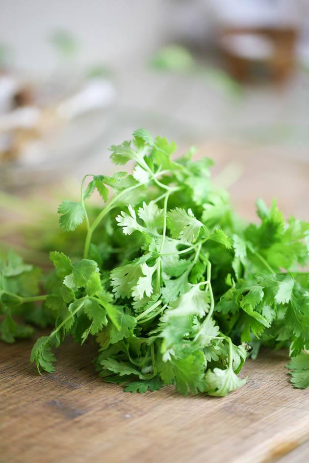 Chopping fresh cilantro to garnish the Southwest chicken chili.