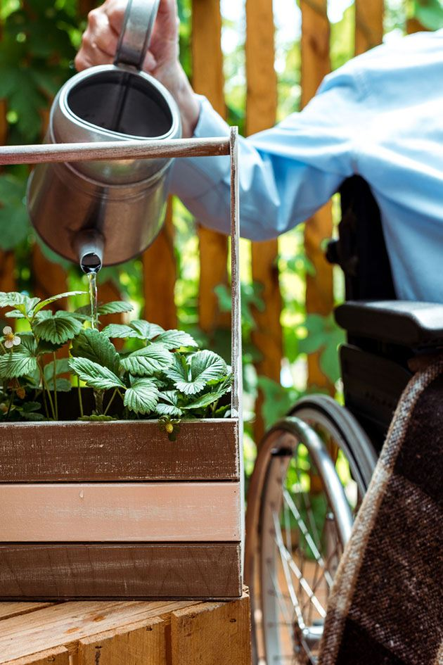 A person in a wheelchair waters a plant.