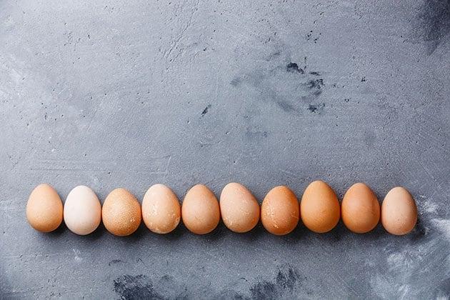 Guinea fowl eggs in a line.