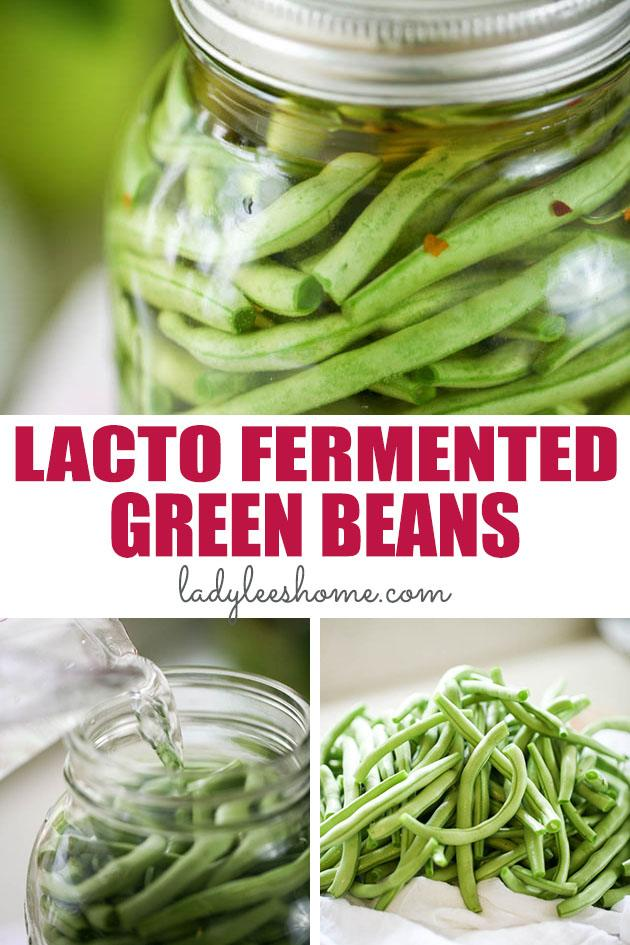 This is a recipe for easy lacto-fermented green beans. A step by step tutorial on how to ferment green beans. They are easy, healthy, and tasty. A great summer snack! #lactofrementation #fermentedgreenbeans #greenbeans #stringbeansrecpies