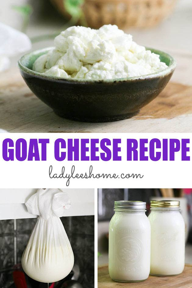 Learn how to make goat cheese from your raw goat milk. This is a simple cheese called chevre that is great for any beginner or more experienced cheesemaker. #chevrecheese #homemadegoatcheese #howtomakegoatcheese #goatcheeserecipe