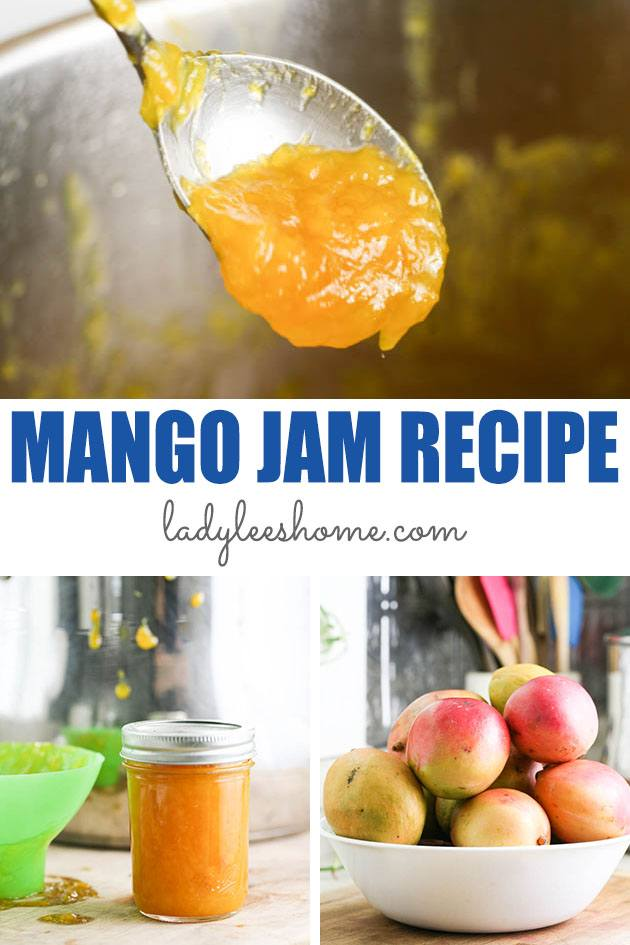 Mango jam is very easy to make! This low sugar mango jam requires only a few ingredients and cook pretty quickly. It's delicious and also easy to can.  #mangojam #lowsugarjam #howtomakejam #mangorecipes