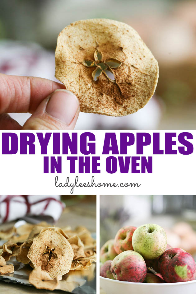 Learn how to dry apples in the oven. This is a fun, easy, and healthy recipe for homemade apple chips in the oven. A favorite homemade snack!