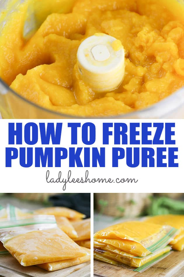 Learn how to freeze pumpkin puree so you can enjoy pumpkins year-round. Freezing pumpkin puree is a simple and quick way to preserve pumpkins for up to a year.  #pumpkinpuree #freezingpumpkinpuree