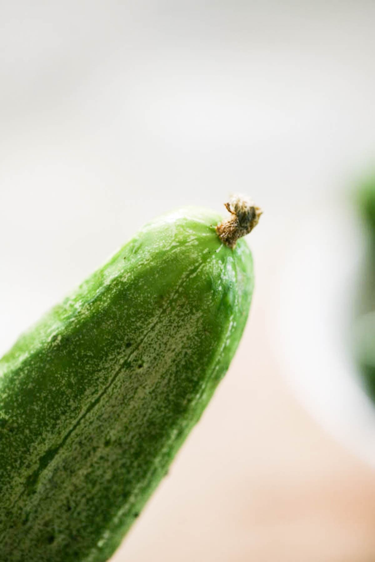 Blossom end of a cucumber.