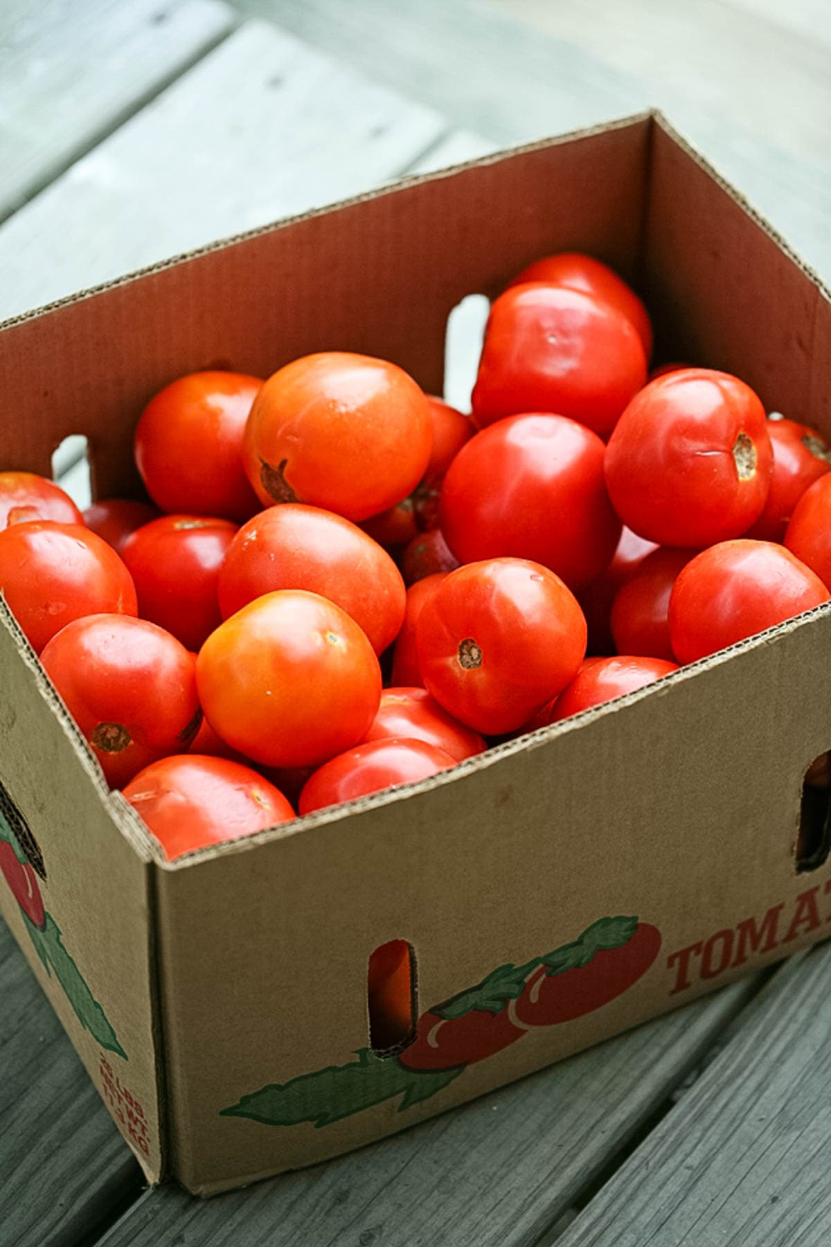 A box of ripe tomatoes for sauce.