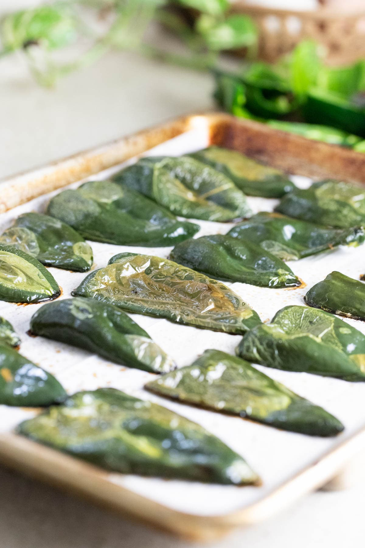 Roasting poblano peppers before canning them.